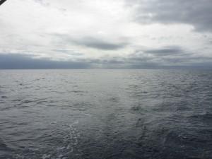Shetland astern