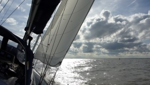A lovely sail in to the Blackwater. Bradwell ahead ..